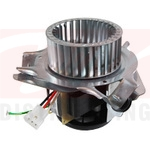 Draft Inducer Blower Motor Assembly